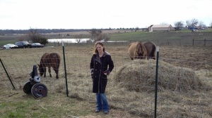 Stacie Douthitt with her rescue horses. The tornado's path of destruction can be seen in the background.